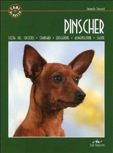 Tutto sul cane Pinscher